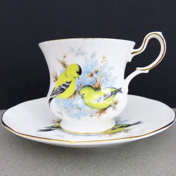Queens Rosina Birds of America goldfinch tea cup and saucer - Rosina series I Birds of America fine bone china - Made in England