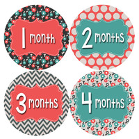 Baby Girl Monthly Baby Stickers Style #407