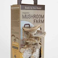 Back To The Roots Organic Mushroom Farm Kit- Brown One