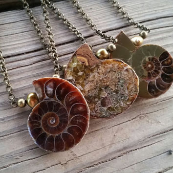 ammonite fossil necklace // ammonite jewelry // ocean jewelry // HEY08Q