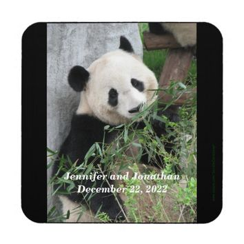Coasters, Set of 6, Panda Beverage Coaster