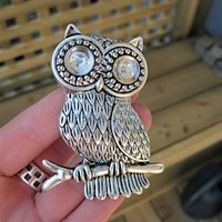 Owl Drawer Knobs with Glass Crystal Eyes in Silver metal