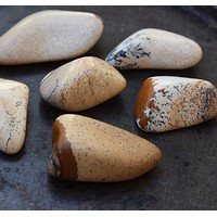 PICTURE JASPER Visionary Stone, See the Big Picture, Humanitarian Aquarius Gemstone