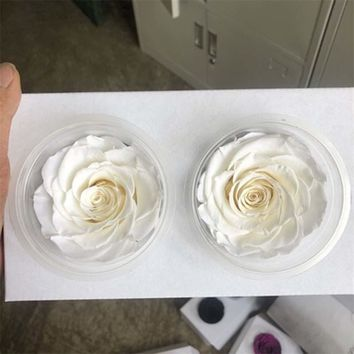 7-8CM Head High Quality Dry Natural Fresh Preserved Roses,Beauty And The Beast Forever Rose For Eternal Life Flowers Material