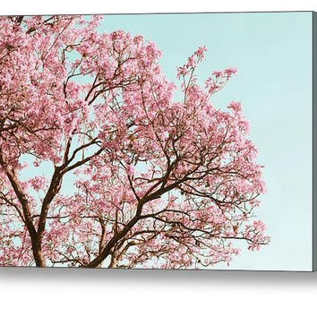 Cherry Blossom Art, Pink Tree Canvas, Spring Home Decor, Cherry Blossom Tree, Nature Picture, Robins Egg Blue, Tiffany Canvas Gallery Wrap