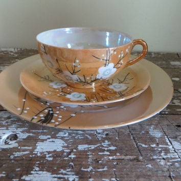 Peach Lusterware Dessert Plate and Tea Cup made in Japan Hand painted Dogwood Dessert Set