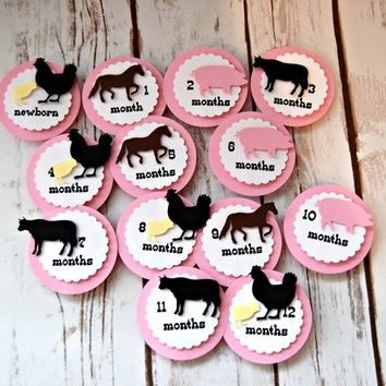 Vintage Chic Farm Girl Birthday Photo Banner Clips with Ribbon