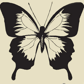 Vinyl Wall Art Decal Sticker Large Butterfly #105