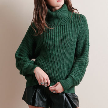 Playing The Field Turtleneck Sweater