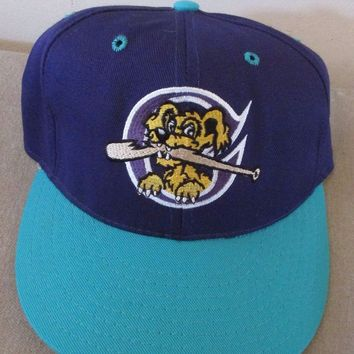 Minor League Baseball Charleston Riverdogs Texas Rangers Fitted Hat Cap Size 7