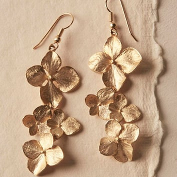 Gilt Dogwood Earrings
