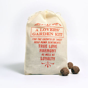 VisuaLingual: Sweet Sentiments, A Lovers' Garden Seed Bomb Kit to Grow Flowers