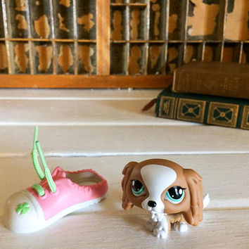 Littlest Pet Shop, Little Pet Shop, Lps Cocker Spaniel, LPS Dog, LPS Shoe, Littlest Pet Pairs, Lps Pet Shop, LPS Pet Pairs, Shoe and Dog