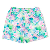Strong Boalt Trunk Tropicool