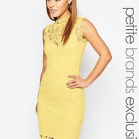 Paper Dolls Petite High Neck Lace Dress With Keyhole Back