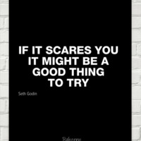 If it scares you it might be a good thing to try by Seth Godin #4461