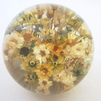 Lucite Paperweight Wild Flowers Encased