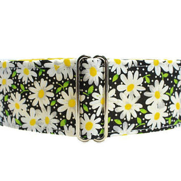 1.5 Inch Martingale Collar, Daisy Martingale Collar, Daisy Dog Collar 1.5 Inch Dog Collar Wide Dog Collar Greyhound Collar Floral Martingale