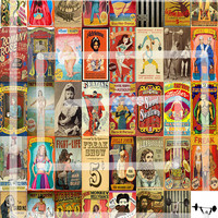 """40, Vintage Circus Sideshow & Freak Show Vintage Playbills/Posters/Ads/Clipart Stickers, 1x2"""" Vertical"""