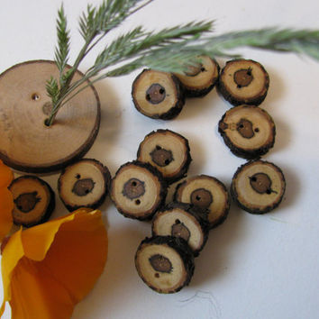 "Twelve wood buttons made of plum wood in BC, Canada. 3/4"" x 7/8"" round. Scarves, cowls or just about any fibre art project."