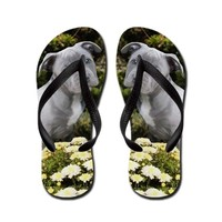 Pitbull Puppy Flip Flops on CafePress.com