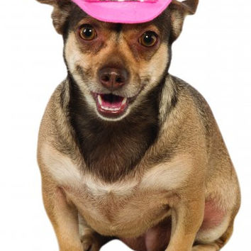 Pink Tiara Dog Cowboy Hat