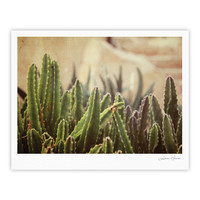 "Jillian Audrey ""Green Grass Cactus"" Green Brown Fine Art Gallery Print"