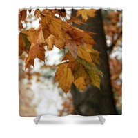 Autumn Leaves 2- by Linda Woods Shower Curtain