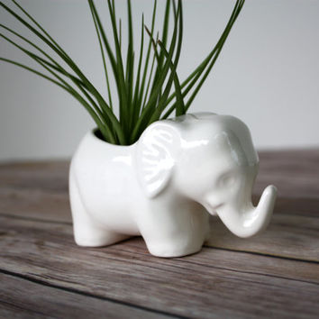 Elephant Planter, Elephant Air Plant Holder.  Tiny ceramic elephant, perfect for an air plant or little succulent.  Handmade Elephant