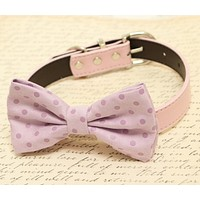 Purple Dog Bow Tie attached to collar, Pet wedding accessory