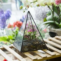 Modern Table Dodecahedron Glass Terrarium Succulent Plant Terrarium Box Flowerpots Pyramid Planter Geometric Bonsai Flower Pot