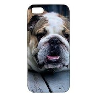 English Bulldog iPhone 5 5s Case Cover Premium Hardshell