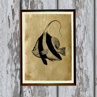 Odd fish print Old paper Antiqued decoration vintage looking 8.3 x 11.7 inches