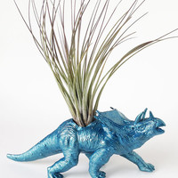Dinosasur Planter with Air Plant Room Decor, College Dorm Ornament, Plants and Edibles, Tillandsia, Repurposed Toy