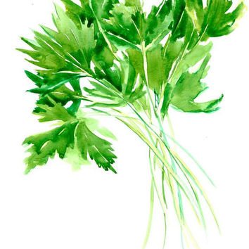 Parsley green kitchen wall art, bright green painting parsley art 12 x 9 in, watercolor paper
