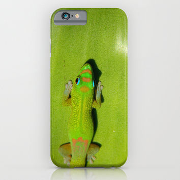 Geckos//Geckos//And More Geckos iPhone & iPod Case by Kelli Schneider