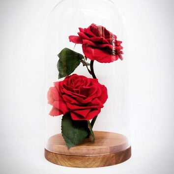 New * Forever rose/Enchanted rose/Beauty and the beast rose/disney/fairytale/romantic/white roses/glass and rose/rose in a bottle/glass dome