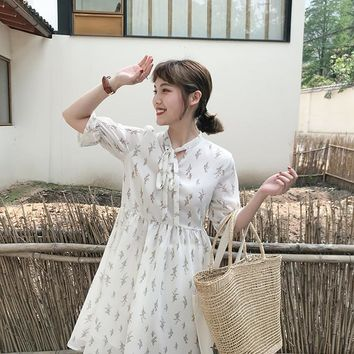 Summer Floral Print Chiffon Dress