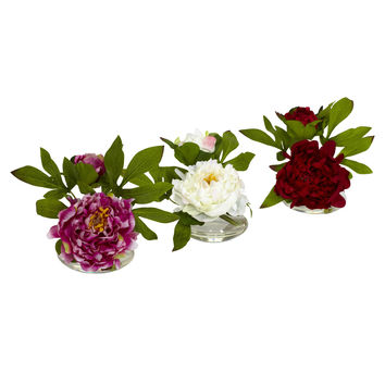 Peony w/Glass Vase (Set of 3)