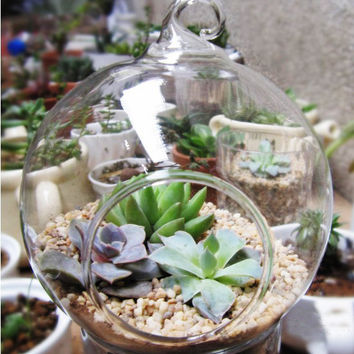 Hot Sale Round hanging glass vase,terrarium planter, water planter, flower vase or home decoration, wedding decoration and etc