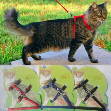 ac NOOW2 Cat Harness And Leash Hot Sale 3 Colors Nylon Products For Animals Adjustable Pet Traction Harness Belt Cat Kitten Halter Collar