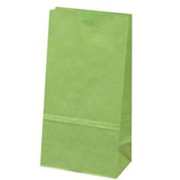 12 Green Lunch Bag Paper Favor Treat Bag