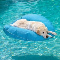 The Green Head - Dog Pool Float