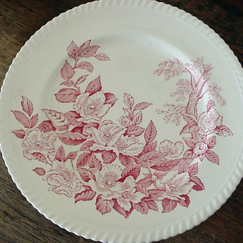 Vintage  Red Johnson Bros Transferware Plate Apple Flower Blossoms