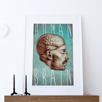 Medical Anatomy Illustration Human Brain Print Vintage Illustrated Antique Human Giclee Cotton Canvas or Paper Canvas Wall Decor Art
