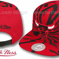 Bulls EARTHQUAKE SNAPBACK Red Hat by Mitchell & Ness