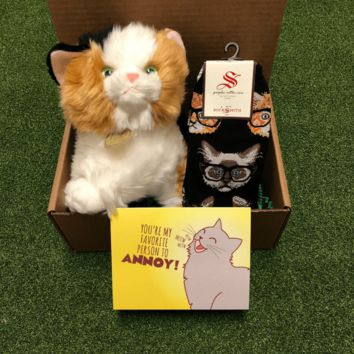 Calico Cat Care Package