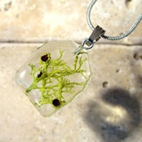 Wolf Lichen (Letharia vulpina) Necklace, Moss Jewelry, Plant Jewelry, mycology, fungi, woodland, nature, dryland