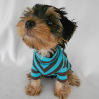 Designer Cotton Interlock Striped Dog Shirt Chocolate Teal - XS