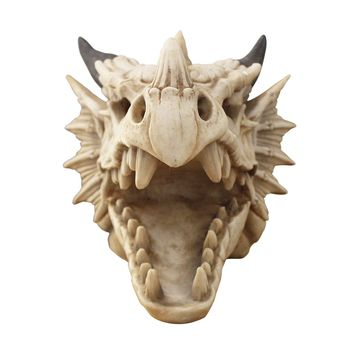 The Drogon Skull | Large Dragon Skull | Faux Taxidermy | Natural Resin